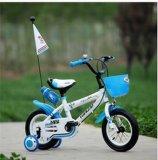 Il ragazzo dell'Europa scherza la bici promotrice dei bambini delle rotelle del regalo due