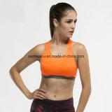 편리한 여자 테니스 스포츠 브래지어 체조는 적당 조끼를 착용한다
