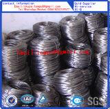 Fil d'acier de fil/galvanisé/fil obligatoire (BWG4-BWG36)