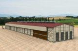 鉄骨構造の小屋が付いている家禽の家の熱い販売の肉焼き器装置