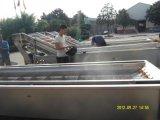 Cortador vegetal manual - equipamento da trasformação do vegetal & dos frutos