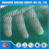 Filet de sécurité extérieur en plastique de HDPE de construction avec ignifuge