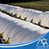 Tela no tejida reforzada de los PP Spunbond de los bordes para la cubierta de la agricultura