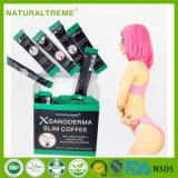Gesundheits-organischer abnehmengewicht-Verlust-Kaffee mit Ganoderma