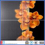 Frost-Glas, bereiftes Glas, Säure ätzte Glas, (EGFG006)