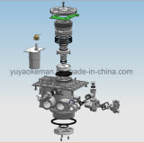Vers le bas soupape de commande automatique de traitement des eaux de flux (ASD2-LCD)