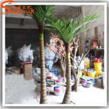 Decoración de interiores de coco artificiales palmera