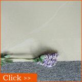 デリーの磨かれた磁器ののどの大理石のタイルの床タイルの価格