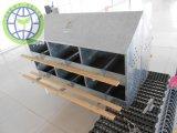 Manual de Uso de Frango 24 Holes Nest Box