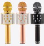 De draadloze Microfoon van de Karaoke van het Huis van de Microfoon voor Computer voor Verkoop