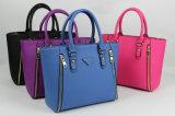 Nuove borse con i disegni della chiusura lampo per le collezioni delle donne di sacchetti