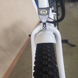 女性のための26inch浜の電気バイク