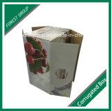 Boîte aux lettres de carton (FP0200039)