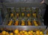 Автоматическая машина померанцового шелушения