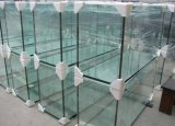 Бак аквариума рыб высокого качества миниый стеклянный