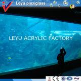 Hoja del plexiglás para el tanque del acuario