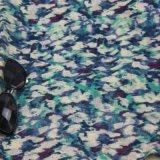 Новый крася шарф картины художника, шали вспомогательного оборудования способа женщин