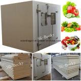 野菜のためのより冷たい冷蔵室の100mm PUの絶縁体の歩行