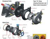 단단한 취급 고무에 의하여 일렬로 세워지는 채광 슬러리 펌프