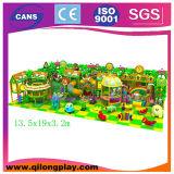 Спортивной площадки детей SGS игры интересной крытой мягкие