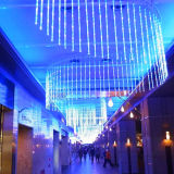 Lumière de rideau en DEL pour la décoration de guichet de l'usine