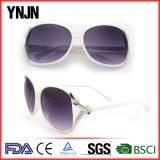 Солнечные очки повелительниц логоса UV400 Ynjn изготовленный на заказ