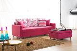 Sofá simples & elegante de Seater da sala de visitas três
