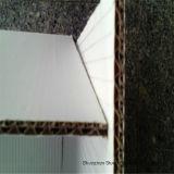 Каменный бумажный (RBD-350) богатый минеральный двойник Coated-350um доски