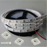 RGB IP68 풀 컬러 SMD5050 칩 30LEDs 9W DC24V LED 지구