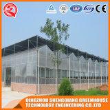 Landwirtschafts-Stahlrahmen-Aluminiumprofil PC Blatt-Gewächshaus