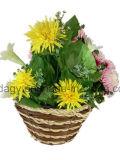 Круглый цветочный горшок сада сторновки с вкладышем