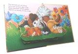 La stampa in offset di carta schiocca in su il libro con il Hardcover