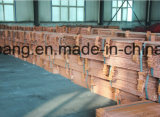 工場は高い純度の銅の陰極99.99%を提供する