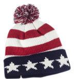 شتاء قبعة عادة أكريليكيّ يحبك قبعة [بوم] [بوم] [بني] قبعة جاكار [بني] قبعة