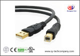 USB 2.0 - un macho a B macho Cable (10 pies)