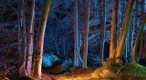 Intelligenza ed illuminazione integrante di paesaggio