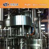 Cadena de producción de la bebida del jugo del mango