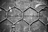競争価格の六角形の溶接された金網