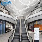 Scala mobile dell'interno esterna della casa della scala mobile del centro commerciale di Residentail di migliori prezzi