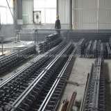 فولاذ متحمّل [إإكسبنسون جوينت] تضمينيّة لأنّ جسم وطريق عامّ
