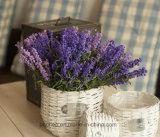 (BC-WF1022) Cestino naturale Handmade puro del fiore del salice