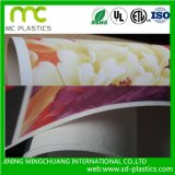 Texture neuve de papier de mur de base d'impression, papier peint de PVC