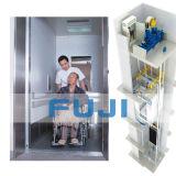 FUJI-Passagier-Aufzug für Behinderte
