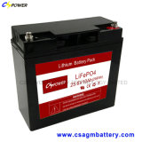 Lithium Iron Phosphate Battery (LiFePO4) 12V 24V, Like VRLA Appreance