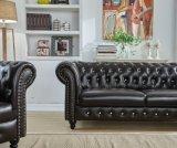 本革の部門別のソファイギリスデザインソファーが付いている居間の家具