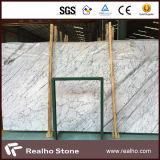 壁の装飾のためのイタリア白いStatuarioの大理石