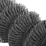 Rete metallica esagonale (caldo-tuffata galvanizzato)