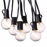 indicatori luminosi della stringa del globo della lampadina G40 di 25FT con le lampadine libere