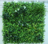 L'erba artificiale pianta la parete per la decorazione