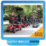 Doppeltes Seat Handicapped Electric Mobility Scooter 1300watt